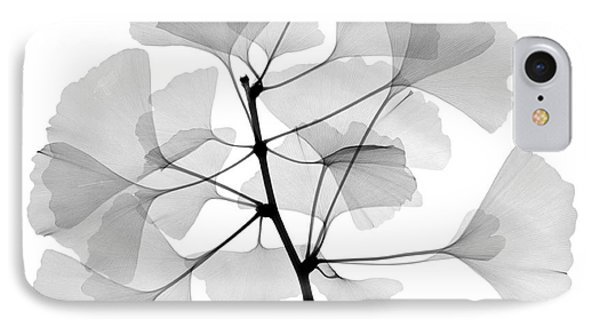 An X-ray Of Ginko Leaves Phone Case by Ted Kinsman