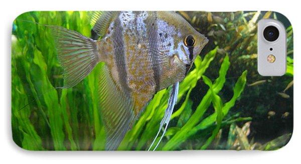 Angel Fish Phone Case by Tanya Moody