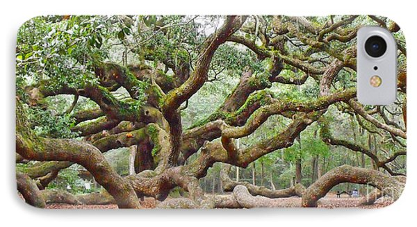 Angel Oak IPhone Case