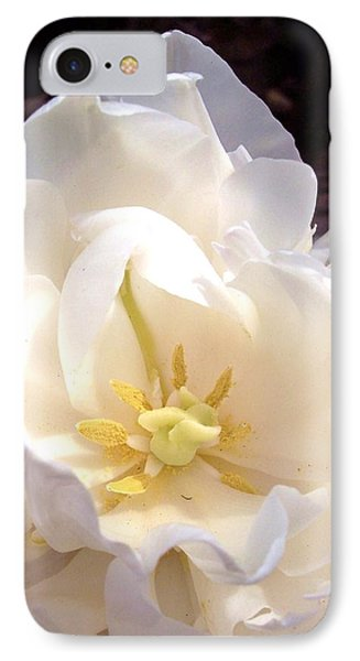 Angelic Tulip IPhone Case by Rebecca Overton