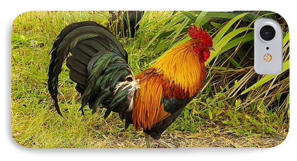 Another Rooster Phone Case by John  Greaves