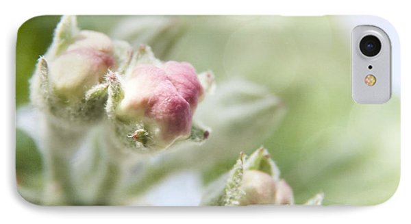 Apple Tree Blossom IPhone Case by Agnieszka Kubica