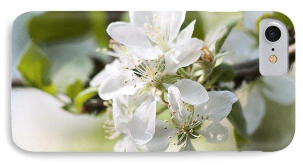 Apple Tree Flowers IPhone Case by Agnieszka Kubica