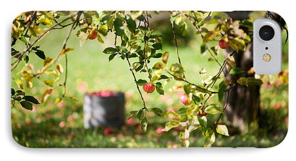 Apple Tree Phone Case by Kati Molin