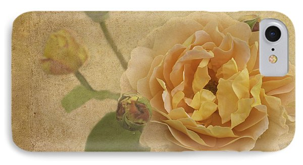 Apricot Bliss IPhone Case by Diane Schuster