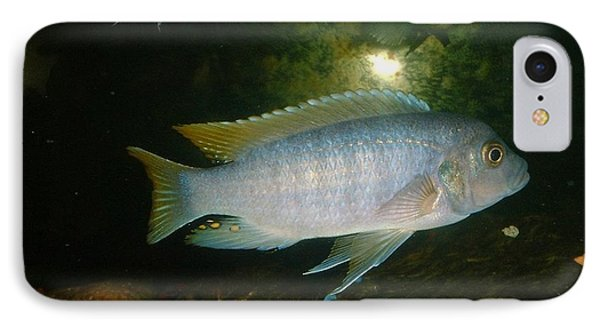 IPhone Case featuring the photograph Aquarium Life by Bonfire Photography