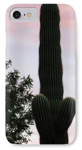 Arizona Cactus Erectus IPhone Case by Rand Swift