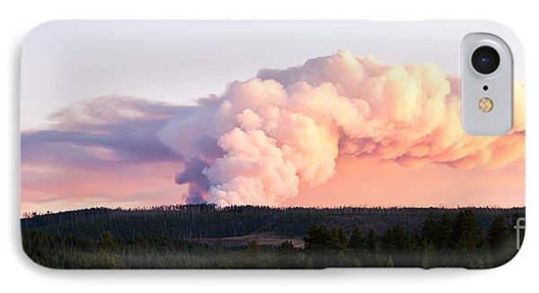 Arnica Fire Phone Case by Bob and Nancy Kendrick