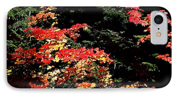 IPhone Case featuring the photograph Arrival Of Autumn by Nick Kloepping