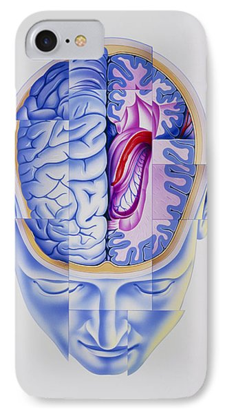 Art Of Abstract Head Showing Brain Limbic System IPhone Case