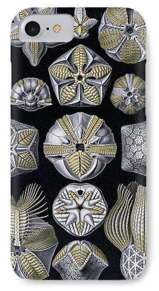 Artforms Of Nature Phone Case by Ernst Haeckel