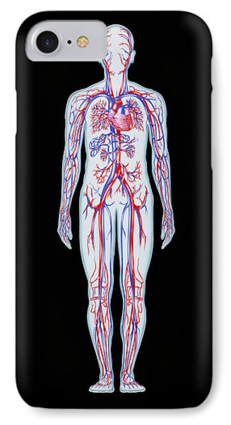 Artwork Of Human Blood Circulation Phone Case by John Bavosi