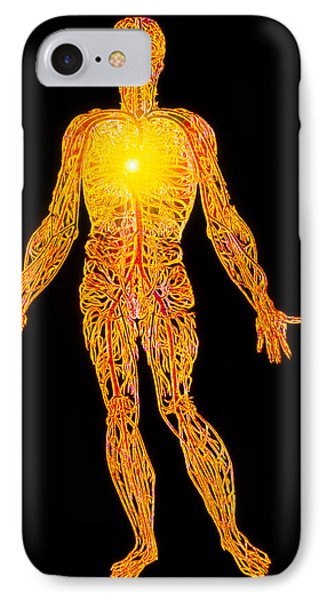 Artwork Of The Human Venous System (from Vesalius) Phone Case by Mehau Kulyk