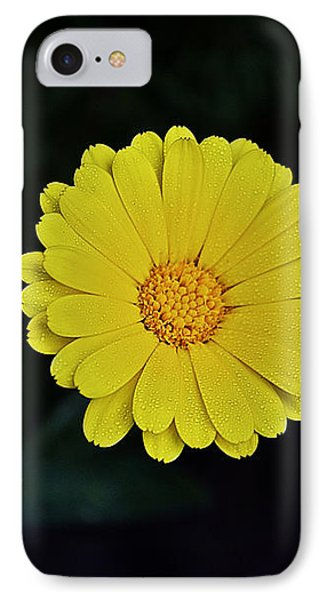 Artwork Of The Nature For A Moment Phone Case by Axko Color de paraiso