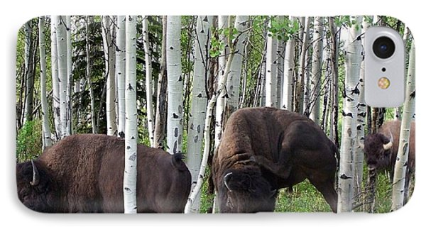 Aspen Bison Phone Case by Bill Stephens