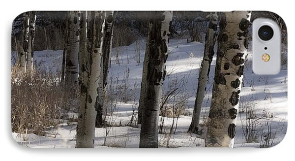IPhone Case featuring the photograph Aspen Grove by Angelique Olin