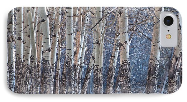 IPhone Case featuring the photograph Aspen Grove by Colleen Coccia