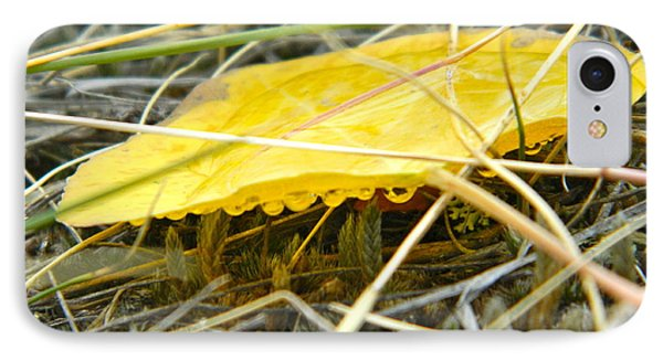 Aspen Leaf After The Rain Phone Case by Sara  Mayer
