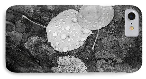 Aspen Leaves In The Rain IPhone Case