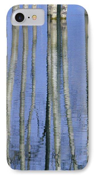 Aspen Poplar Trees Reflected In Spring Phone Case by Darwin Wiggett