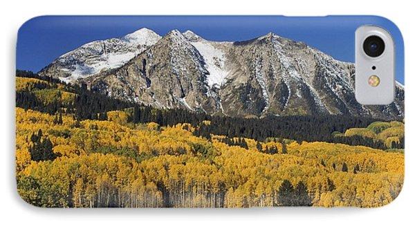 Aspen Trees In Autumn, Rocky Mountains Phone Case by David Ponton