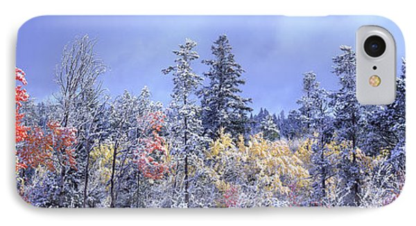 Aspens In Fall With Snow, Near 100 Mile Phone Case by David Nunuk