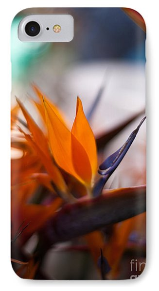 At The Flower Market IPhone Case by Mike Reid