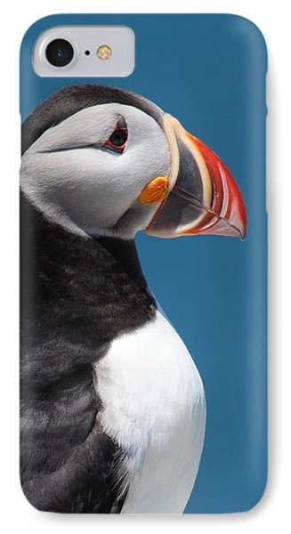 Atlantic Puffin Phone Case by Bruce J Robinson