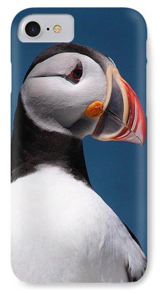 Atlantic Puffin II Phone Case by Bruce J Robinson