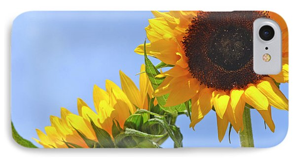 August Sunshine IPhone Case