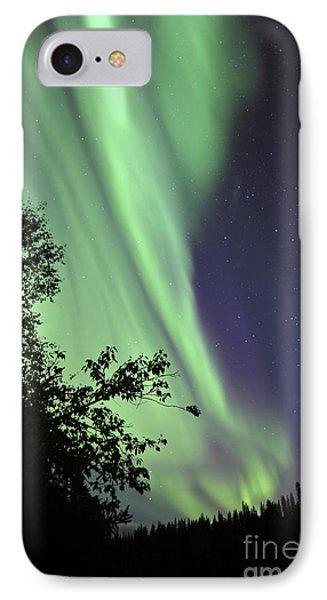 Aurora Borealis Above The Trees Phone Case by Jiri Hermann