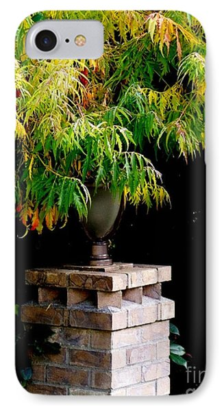 Autumn 2 IPhone Case by Tanya  Searcy