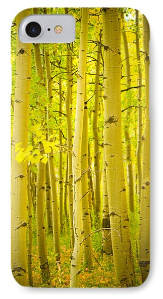 Autumn Aspens Vertical Image  Phone Case by James BO  Insogna