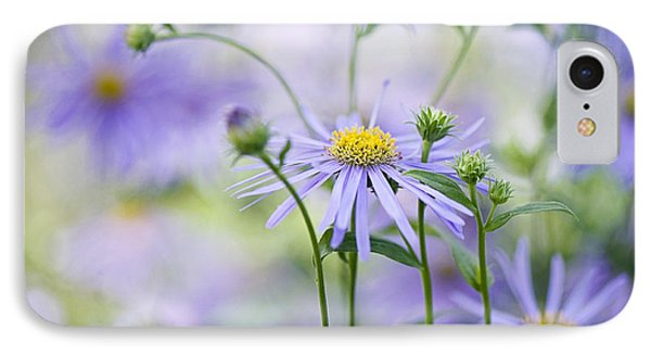 Autumn Asters Phone Case by Jacky Parker
