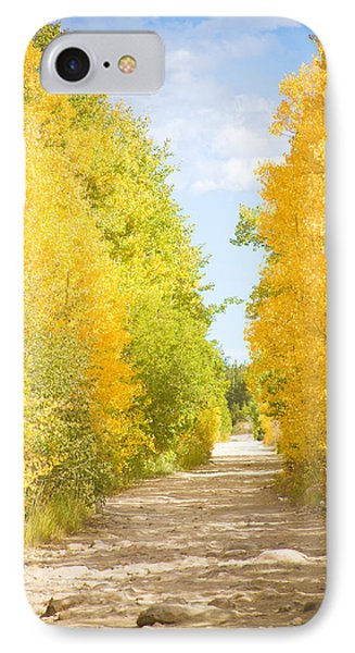 Autumn Back County Road Phone Case by James BO  Insogna