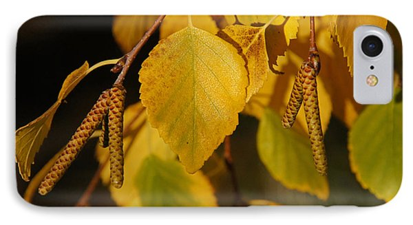 IPhone Case featuring the photograph Autumn Birch In Southern Oregon by Mick Anderson