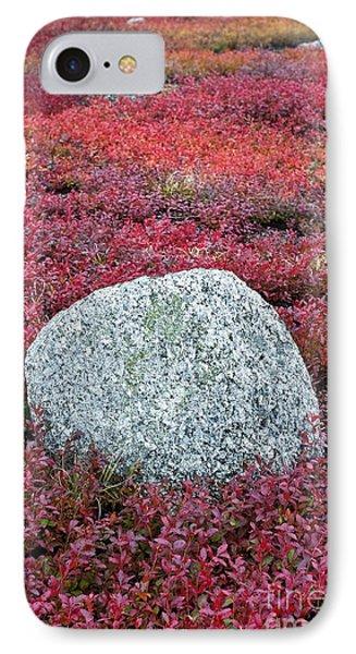 Autumn Blueberry Field Phone Case by John Greim