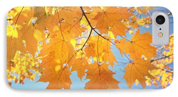 Autumn Colors Phone Case by Kim Hojnacki