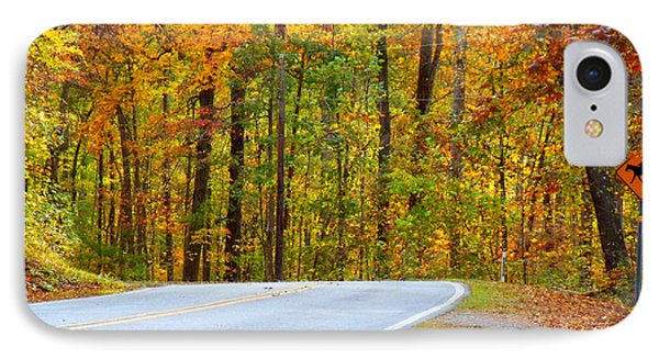 IPhone Case featuring the photograph Autumn Drive by Lydia Holly