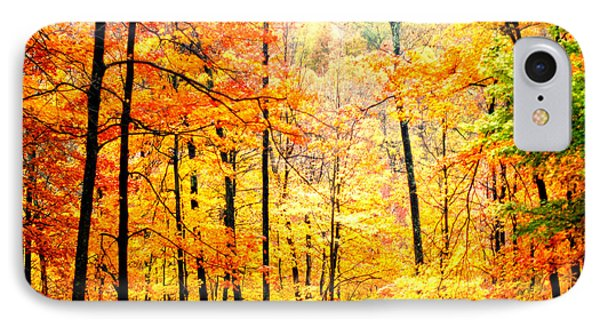 IPhone Case featuring the photograph Autumn Forest by Randall Branham