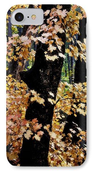 Autumn Forest  IPhone Case by Saija  Lehtonen