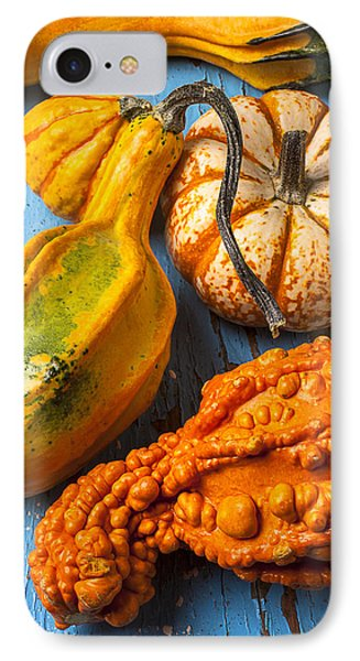 Autumn Gourds Still Life IPhone Case by Garry Gay