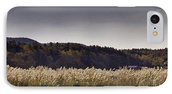 Autumn Grasses - North Carolina Autumn Scene Phone Case by Rob Travis