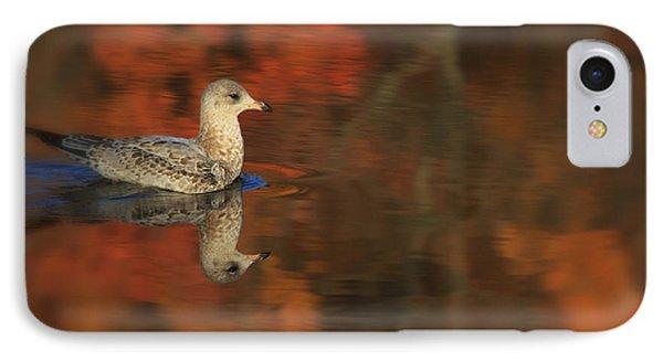 Autumn Gull Phone Case by Karol Livote
