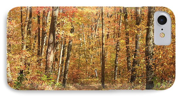IPhone Case featuring the photograph Autumn In Minnesota by Penny Meyers