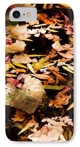 Autumn In Texas IPhone Case