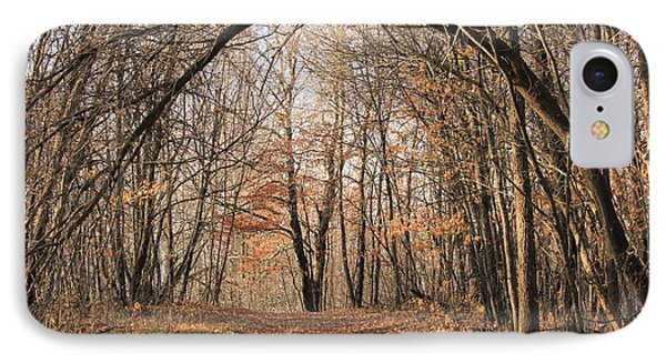 IPhone Case featuring the photograph Autumn In The Woods by Penny Meyers