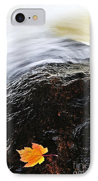 Autumn Leaf On River Rock Phone Case by Elena Elisseeva