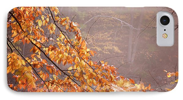 IPhone Case featuring the photograph Autumn Leaves And Fog by Tom Singleton