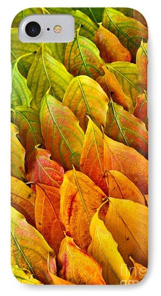 Autumn Leaves Arrangement IPhone Case by Elena Elisseeva